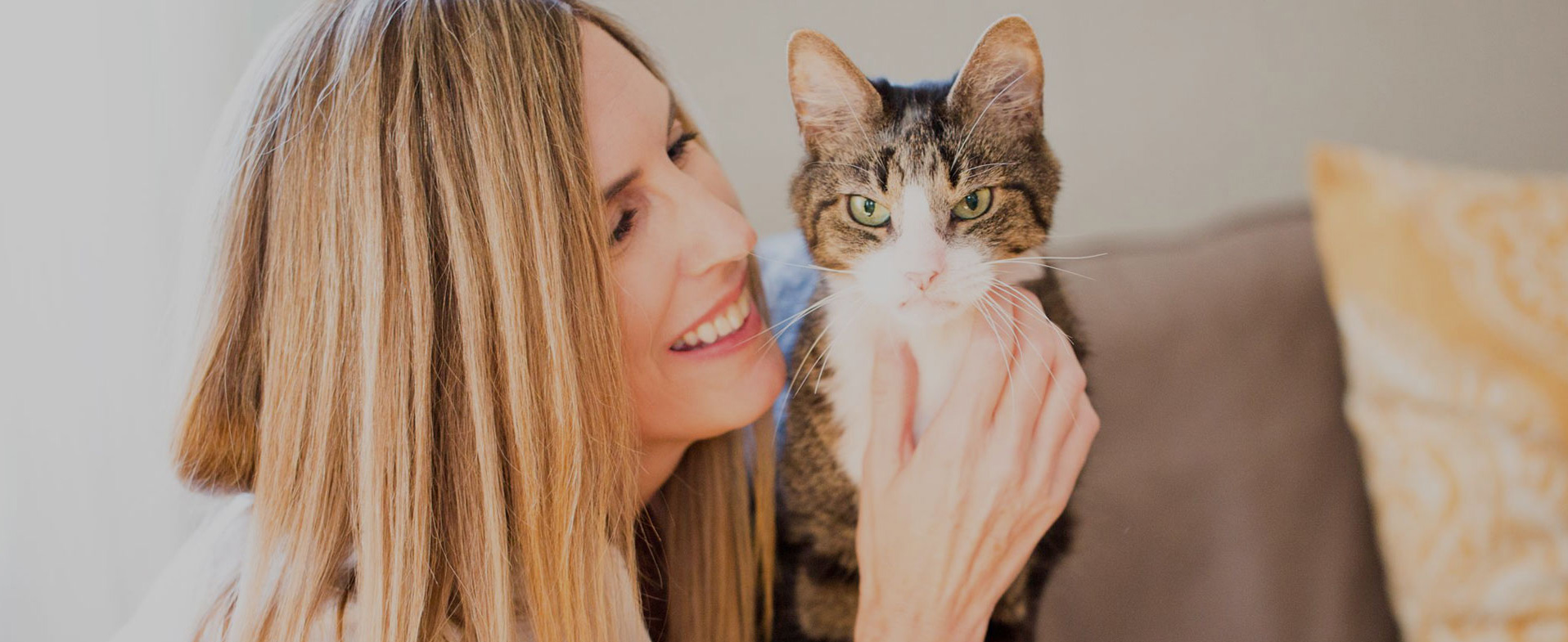 Helping Pets Fight Cancer